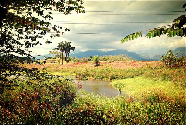 Da Flickr.com, Foto di Matlacha, Colours of Costa Rica, Licenza Creative Commons (CC BY-NC-SA 2.0)