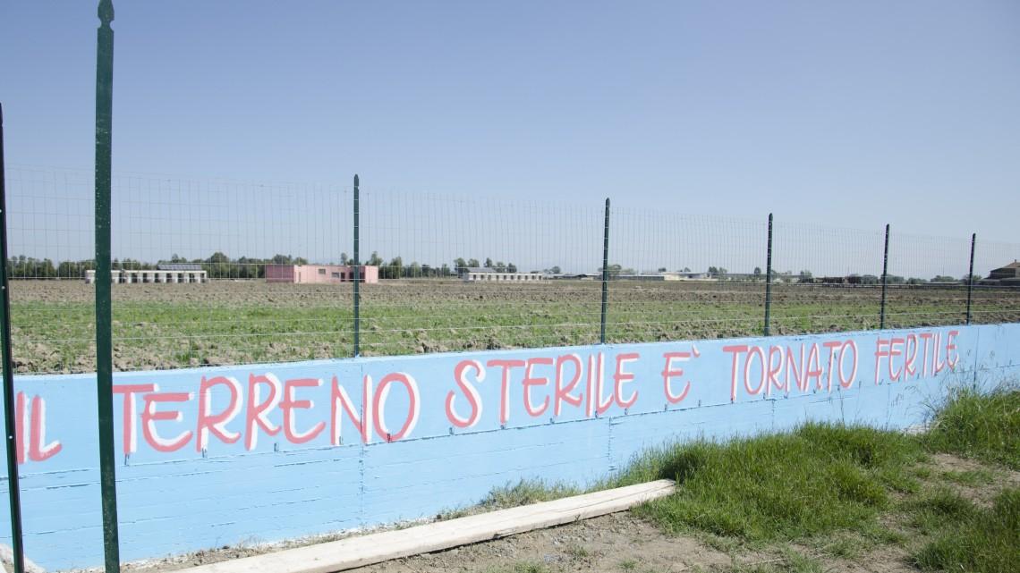 Foto di Sergio D'Amato