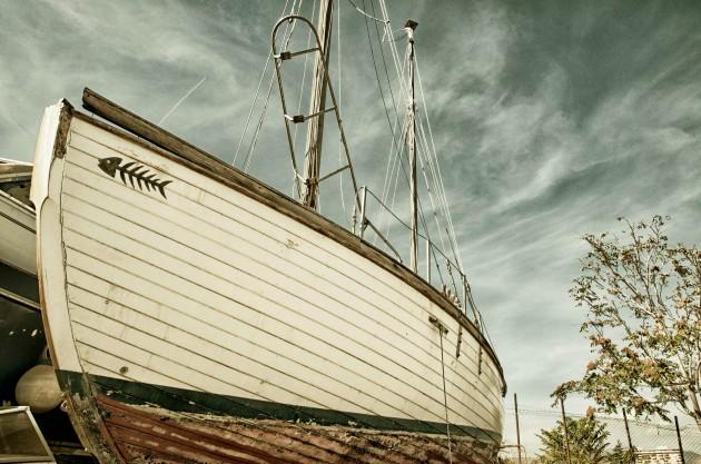 Immagine della barca Lisca Bianca