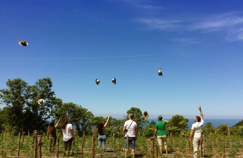 Be rural be happy!, Fuscaldo (CS), Giuliana Scofano